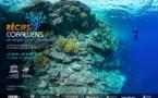 Les coraux à l'honneur au siège de l'Unesco