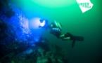 Une expédition scientifique pour étudier nos coraux, nos requins et un habitat sous-marin