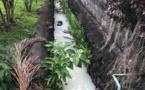 Mahina : du liquide blanchâtre dans un ruisseau près d'une école maternelle