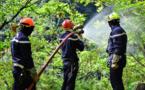 Lutte contre les feux de forêts : quinze pompiers en formation