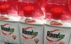 Monsanto sur le banc des accusés dans un procès visant le Roundup