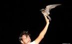 OTNF: Hiria et l'oiseau