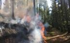 """Incendie Vaipahi : """"l'objectif est d'éviter que le feu parte dans une autre vallée"""" (Colonel Pierre Masson)"""
