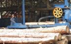 Une étude pour un prototype de fare en bois local