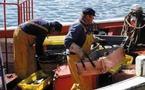 Deux projets de loi du Pays  portant statut du marin pêcheur