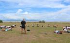 Des collégiens s'initient au CrossFit avec l'Armée de l'air