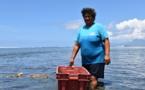 """Direction des ressources marines : """"On ne peut parler de surpêche de vana pour le moment"""""""