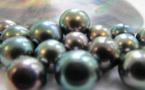 Le grand lifting juridique de la perliculture