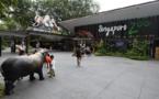 A Singapour, les foudres écologistes sur un projet écotouristique