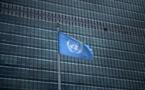 L'ONU cherche un stagiaire pour finaliser un site sur la Polynésie