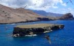 Des associations éradiquent le rat noir sur l'îlot Teuaua aux Marquises