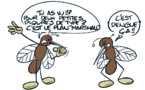 """"""" La dengue 2 """" vu par Munoz"""