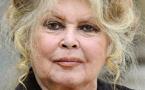 """La Réunion: Bardot présente des excuses et redit sa """"révolte"""""""