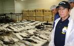 Thon rouge : pêche exceptionnelle aux Marquises