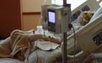 La césarienne entraîne plus de complications graves pour la mère