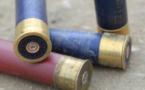 Nouvelle-Zélande: la nouvelle loi sur les armes sur le point d'entrer en vigueur