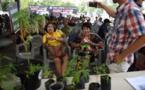En Thaïlande, première fête du cannabis après la légalisation à usage médical