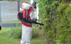 Lutte contre la dengue de type 2 : Des pulvérisations à Papeari et Papetoai