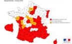 Le moustique tigre gagne Paris et plus de la moitié du territoire