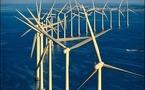 Eolien marin: une association demande la suspension d'une expérimentation