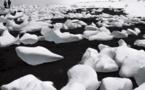 Climat: premier revers pour une plainte pionnière contre l'UE