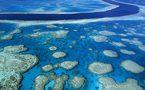 Les trésors de la biodiversité française en Outre-mer gravement menacés, selon FNE