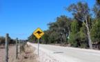 Australie: quatre enfants font 1.000 kilomètres au volant d'un 4x4 volé