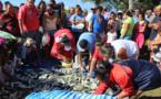 Distribution gratuite d'une pêche miraculeuse de ature à Tautira