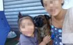 Ses trois chiens euthanasiés pendant son stage de réinsertion