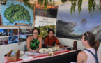 Les pensions espèrent combler l'absence d'Air Tahiti en février