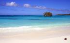 """La Nouvelle-Calédonie en quête d'une stratégie pour réduire le """"risque requin"""""""