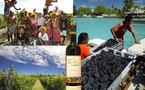 Kalani Teixeira visitera les vignobles de Rangiroa ce mardi