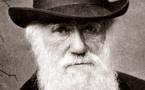 Page enfant : Darwin et la théorie de l'évolution