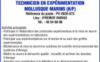 IFREMER RECHERCHE UN TECHNICIEN EN EXPERIMENTATION MOLLUSQUE MARINS (H/F)