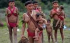 Brésil: la culture indigène menacée par le coronavirus