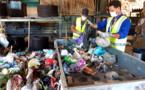 Ces déchets verts qui n'ont rien à faire dans nos poubelles