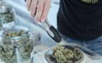 """Le cannabis thérapeutique """"illégal mais vital"""""""