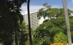 Le cœur vert de Honolulu