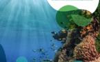 Kiwa : 4 milliards contre le changement climatique