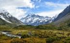 La Nouvelle-Zélande en guerre contre les cacas sauvages