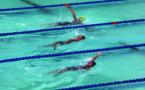 134 nageurs pour la coupe Guy D'Esposito
