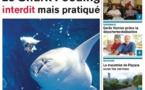 TAHITI INFOS N° 40 du 19 février 2013