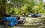 Lancement bénévole du tri sélectif à Fakarava : notre goutte dans l'océan.