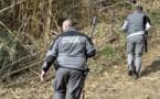 Des loups s'échappent d'un parc animalier: deux abattus, deux introuvables