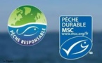 "Nombre de pêcheries abusivement labellisées MSC ""pêche durable"""