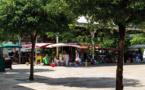 Guadeloupe: instauration d'un couvre-feu face aux variants du covid