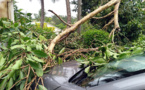Calédonie : le cyclone Niran prive 39 000 foyers d'électricité