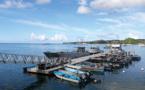 Immigration: au moins trois morts dans un naufrage au large de Mayotte