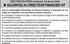 OFFRE D'EMPLOI POUR LE POSTE ADJOINT(E) AU DIRECTEUR FINANCIER H/F