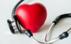 Le cœur, un muscle extraordinaire